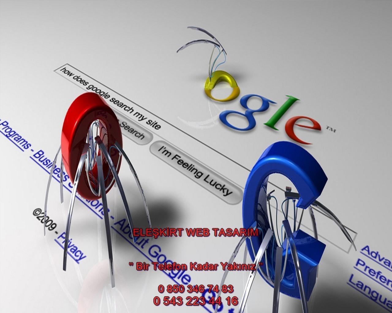 Eleşkirt Web Tasarım