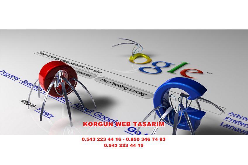 Orta Web Tasarım