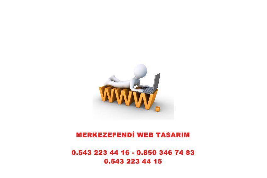 Sarayköy Web Tasarım