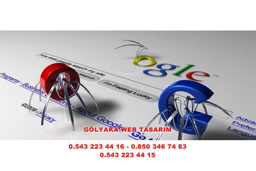 Gümüşova Web Tasarım