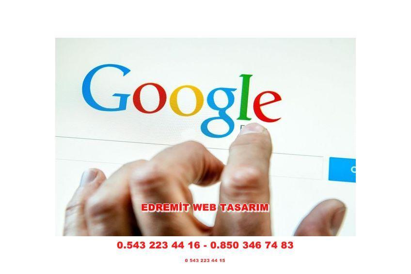 Edremit Web Tasarım