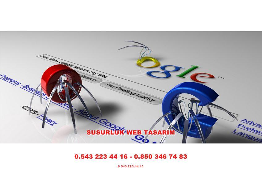 Susurluk Web Tasarım