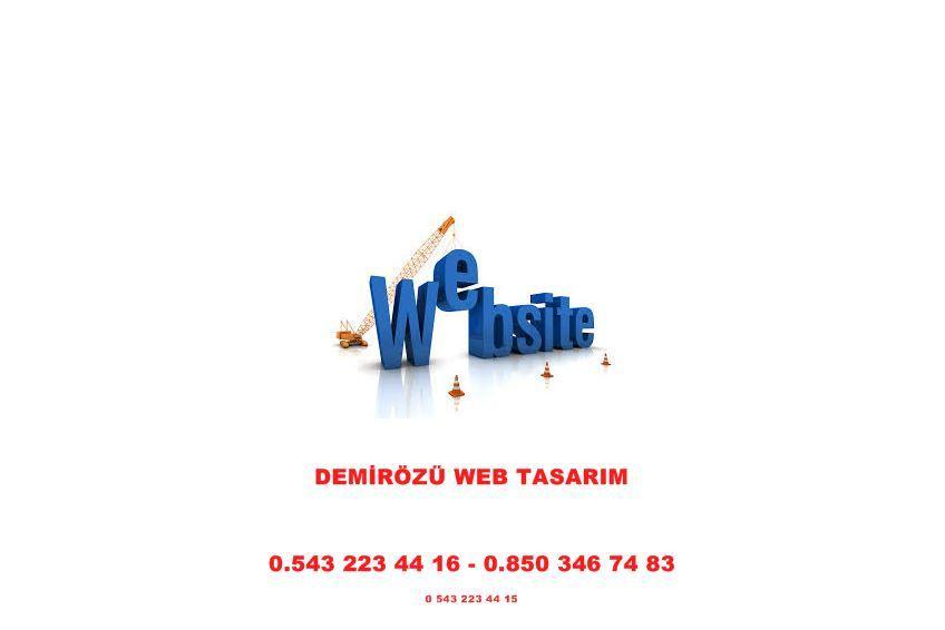 Demirözü Web Tasarım