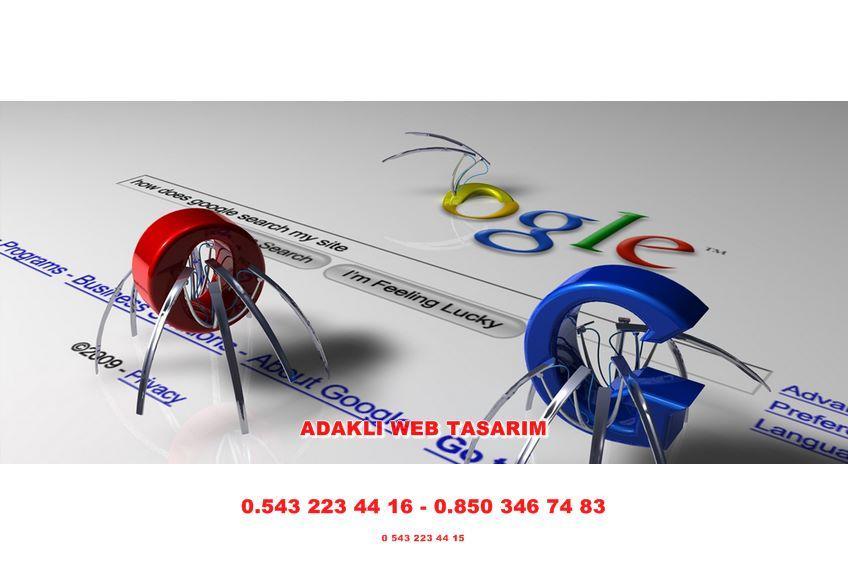 Adaklı Web Tasarım