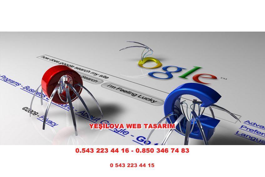 Yeşilova Web Tasarım